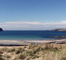 Shetland Isles by Lynn Bolt