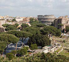 The Colosseum by Devereux Purdon