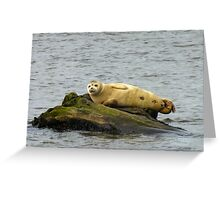 Chillin' As You Do Greeting Card