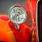Feather Boa - Classic Car by Doreen Erhardt