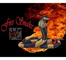 Zodiac fire snake Photographic Print