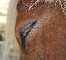 Shy Eyes by MichelleAyn