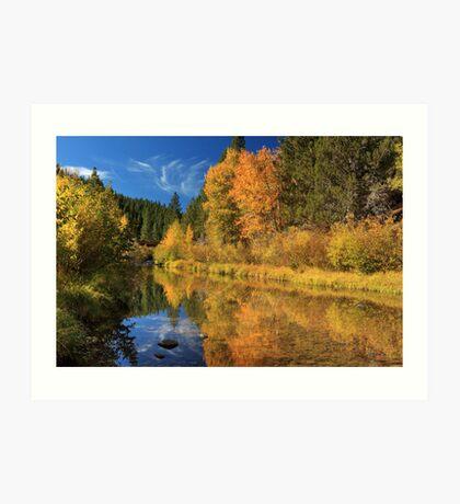 Autumn Along The Susan River Art Print