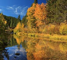 Autumn Along The Susan River by James Eddy