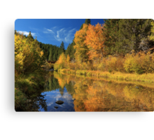 Autumn Along The Susan River Canvas Print