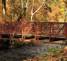 Bridge On Big Chico Creek by James Eddy