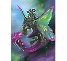 Fairy Dragon Photographic Print