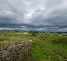 Hadrian's Wall at Housesteads by Nigel Bangert
