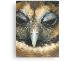 Gizmo-Looking owl Canvas Print