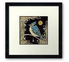 The Jay and the Jewel Framed Print