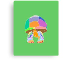 Giant Tortoise Canvas Print