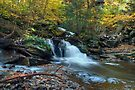 From The Bottom of Conestoga Falls by Gene Walls
