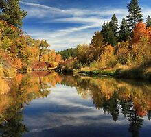 Susan River 10-28-12 by James Eddy