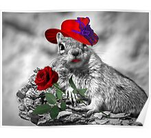 Red Hatter Squirrel Poster