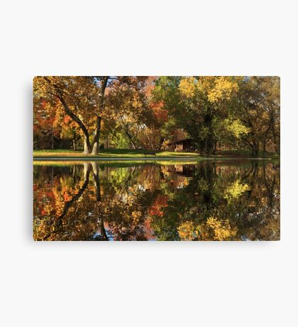 Sycamore Reflections Canvas Print