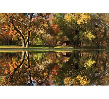 Sycamore Reflections Photographic Print