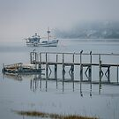 Fog on the Tamar by fotosic