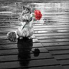 Rainy Days - Squirrel by Doreen Erhardt