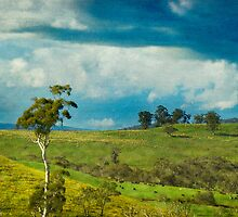 A Tranquil Dorrigo Landscape by Clare Colins
