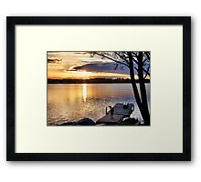 Golden joy Framed Print
