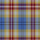 02402 Pinellas County, Florida E-fficial Fashion Tartan Fabric Print Iphone Case by Detnecs2013