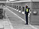 Security by awefaul