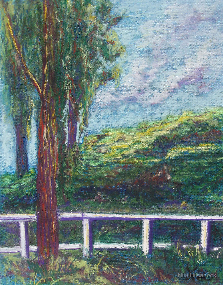 Old Temecula Field (pastel) by Niki Hilsabeck