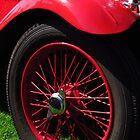 Red Hot Singer by wiggyofipswich