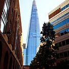 The Shard, London by Ludwig Wagner