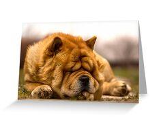 sleeping time Greeting Card