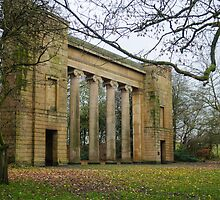 Heaton Park - Manchester by david261272