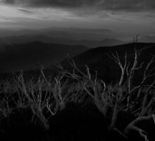 Mt Hotham Sunset 3 BW by DavidsArt