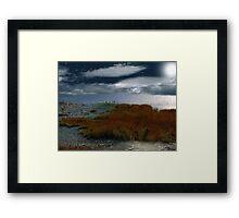 Salt Marsh at the Edge of the Sea Framed Print