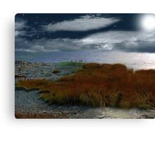 Salt Marsh at the Edge of the Sea Canvas Print