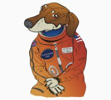 Dachshund Curiosity Rover Kids Clothes
