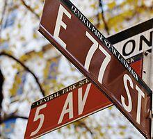 5th Avenue by Kevin Hayden Paris