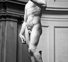 Michelangelo's David by Kevin Hayden