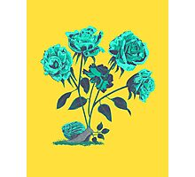 Snails N' Roses Photographic Print
