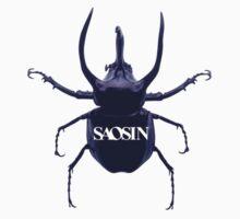 Saosin by Cheikon