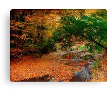 A smattering of  leaves Canvas Print