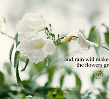 and rain will make the flowers grow by jillohjill