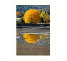 Refelctions of Autumn  Art Print