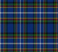 02418 Hartford County, Connecticut E-fficial Fashion Tartan Fabric Print Iphone Case by Detnecs2013