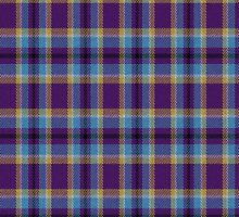 02419 Prince George's County, Maryland E-fficial Fashion Tartan Fabric Print Iphone Case by Detnecs2013