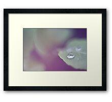 Dreamy Droplet. Framed Print