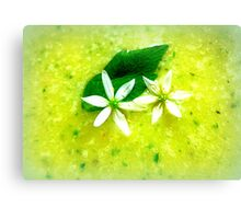 Asparagus and basil soup with wild garlic flowers Canvas Print