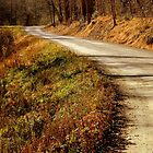 I'll take the HIGH road.........    ^ by ctheworld