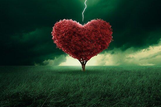 Love at first sight by jordygraph