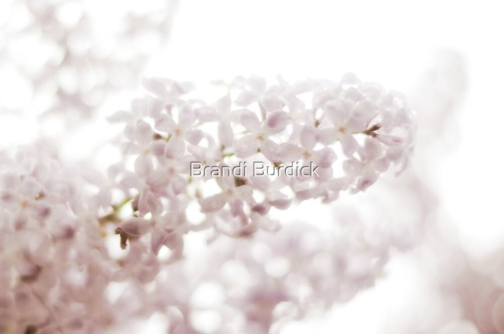 lilacs laced with rain drops~ by Brandi Burdick