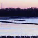 Winter Ricefield by WildestArt